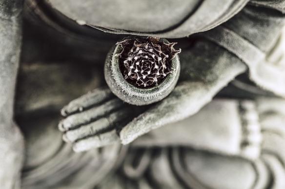 buddha-1287228_640-1